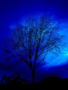 Blue night sky.  For similar pins please follow me at - https://www.pinterest.com/annelouise1959/colour-me-blue/