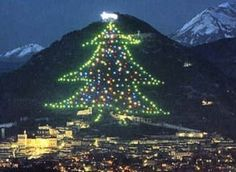 L'albero di Natale: origini e originalità