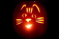 Patterns of cat carved into a Halloween Pumpkin. A huge collection of samples. Cat Pumpkin Carving, Halloween Pumpkin Stencils, Pumpkin Carving Patterns, Halloween Mug, Halloween Treats, Halloween Pumpkins, Halloween Stuff, Pumpkin Carver, Cat Cookies