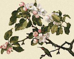 Scarlet Quince cross stitch chart: Hummingbird and Apple Blossoms - Martin Johnson Heade