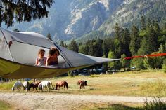 Tentsile Stingray tree tent - the ultimate tree house. Order now   Tentsile tree tents
