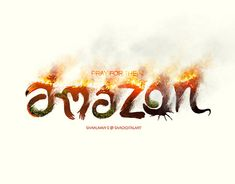 The is on fire. Damage to a major source of oxygen and biodiversity. Deforestation Drawing, Farmers Day, Save Nature, Amazon Rainforest, Pray, Typography, Behance, Fire, Art Direction