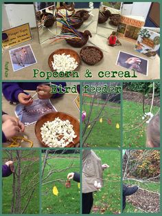 Popcorn and cereal bird feeder on the Finger Gym table this week.