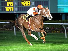 Coalport Seeks Fifth Straight in Mervin Muniz - Ken and Sarah Ramsey, arguably the most ubiquitous presence in U.S. grass stakes, are back again, as they send out their Kitten's Joy   homebred Coalport in the $300,000 Mervin H. Muniz Jr. Handicap (gr. IIT) at Fair Grounds Race Course & Slots March 28.