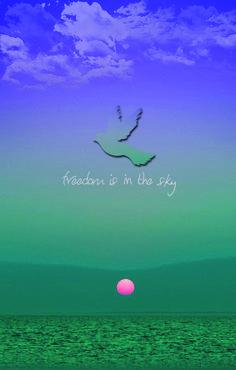 Freedom is in the sky #freedom #sea #bird #sky