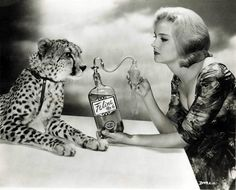 Diane McBain and leopard Crazy Cat Lady, Crazy Cats, Curious Cat, Illustrations, Perfume, Vintage Glamour, Exotic Pets, Poses, Animals