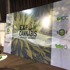 Ready for @expocannabisuy  Blaze YOUR own trail & tag us in you pics and we will repost #piecemakergear.com #piecemaker #BlazeYourOwnTrail #byot #siliconewaterpipe #expocannabisuruguay #hightimes #agendashow #420 #supportingyourlifestyle  #budtender #montevideo #montevideouruguay #uruguay #siliconebongs #champstradeshow #siliconebong #dabbing #southamerica #bigindustryshow #backpacker #campingtrip #bong #adventureanywhere #outdoorretailer