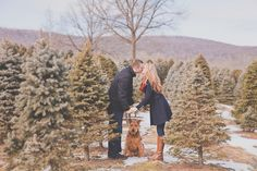 Doing our Christmas pictures in a Christmas tree farm this year! Excited!