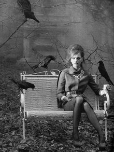 """Hitchcock moves, """"The Birds,"""" revisited and revamped."""