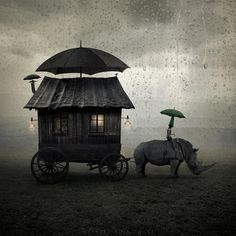 Via Motivarte, Escuela de Fotografia.  Copyright © 2012 (Leszek Bujnowski)