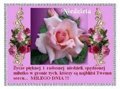Znalezione obrazy dla zapytania życzenia religijne na niedzielę Give It To Me, Rose, Flowers, Peace, Google, Pink, Roses, Royal Icing Flowers, Flower