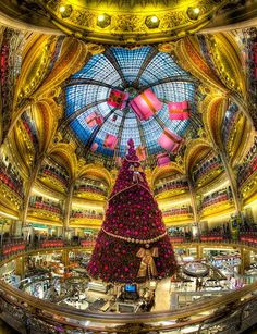 Christmas tree at Gallery Lafayette, Paris