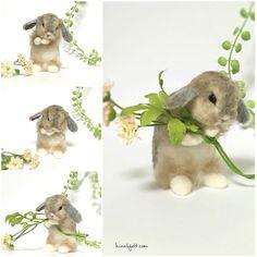 Cute Needle felting wool bunny (Via @hinali_felt)