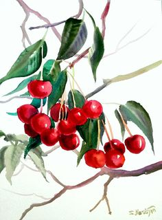 Cherries original watercolor painting 9 X12 fruits by ORIGINALONLY, $32.00