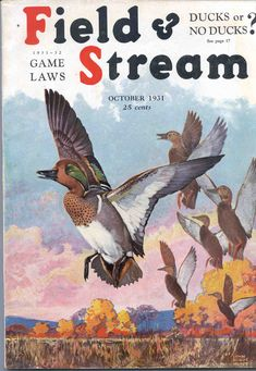 lynn bogue hunt  Cover for Field And Stream