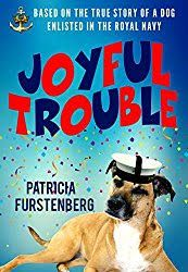 BleachHouseLibrary.ie: Book Review - Joyful Trouble by Patricia Furstenbe...
