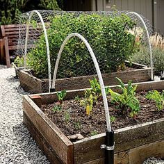 Vegetable planter beds - DIY Yard Makeover: Front to Back - Sunset MobileGreat hoops--solution for the bird issue on items higher than my current pop-up net? I live this idea for greenhouse for spring!Shade Cloth Over Vegetable Garden Inspiration 9 D Vegetable Garden Planters, Raised Vegetable Gardens, Veg Garden, Garden Boxes, Garden Container, Veggie Gardens, Jardin Decor, Raised Bed Garden Design, Shade Garden