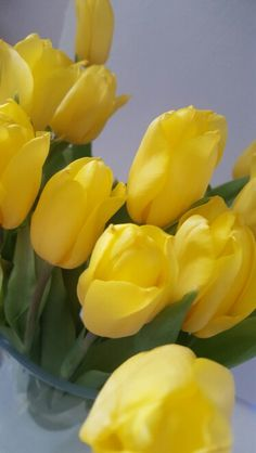 Happy Easter!  #tulips #easter #spring