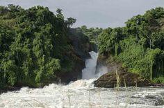 Uganda - Parque nacional de las cataratas Murchison - cataratas Murchison