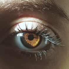 Imagem de eyes, eye, and photography
