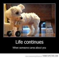 Life continues...When someone cares about you.