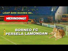 """Ini adalah laga pertama """"perdana"""" bertanding melawan FC Bontang tanpa almarhum Choirul Huda...ada kejadian unik dalam laga pertand..."""