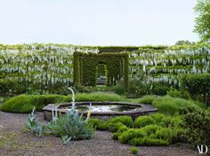 An octagonal spring-fed pond sits in the center of The gravel garden, In which lavender and self-seeding verbascum Grow. The garden's other plantings include rosemary, cistus, yucca, agapanthus, and Gallica Roses | archdigest.com