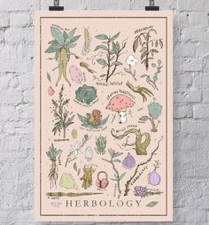 Step into Hogwarts Herbology Class with this Harry Potter themed Herbology print. This print has most of the things you will encounter in Herbology class with P Poster Harry Potter, Harry Potter Bedroom, Harry Potter Gifts, Harry Potter Movies, Harry Potter Plants, Anniversaire Harry Potter, Plant Tattoo, Harry Potter Tattoos, Harry Potter Collection