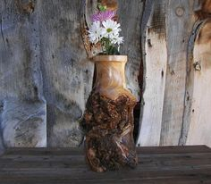 Hey, I found this really awesome Etsy listing at https://www.etsy.com/listing/222329877/rustic-log-vase-aspen-wood-home-decor