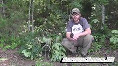 Survival Traps Twitch Up Balance Stick Snare