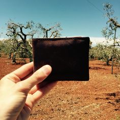 Italy travel moments with the safekeepers rfid protected wallet .
