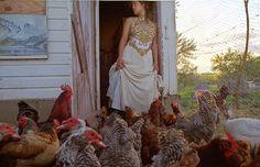 03 - Les poules et les dames