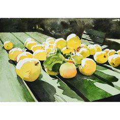 Photo by Elisabeth Biström on September Plant Leaves, Watercolour Art, Watercolors, Plants, September, Instagram, Water Colors, Watercolor Paintings, Plant