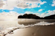 Stunning beach located in Auckland, New Zealand. Flower Landscape, Spring Landscape, Sunset Landscape, Forest Landscape, Forest Scenery, Beach Scenery, Beautiful Landscape Photography, Beautiful Landscapes, Paradise Landscape