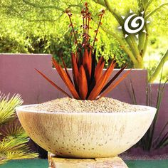 Our Wok Shaped Garden Planter Is Our Best Seller! With Itu0027s Simple Design  And Deep
