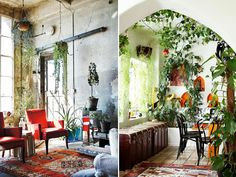 Indoor Gardens SÍ!
