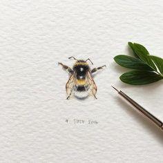 Elle dessine des miniatures d'animaux aux détails mignons et impressionnants