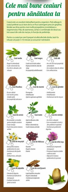 Health And Nutrition, Health Care, Health Options, Tea Benefits, Eat Smart, Natural Health Remedies, Cool Plants, Natural Medicine, Good To Know