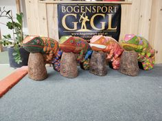 Bring ein bisschen Farbe ins Leben mit den Chameleon von Asen Sports. Sport, Gift Wrapping, Gifts, Arch, Round Round, Color, Gift Wrapping Paper, Deporte, Presents