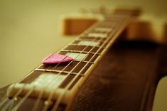 How to Choose the Right Guitar Pick(Plectrum) Like in so many aspects of life, success is in the detail. So when you're shopping for your next (or your first) guitar picks, there are a few details you may want to consider.