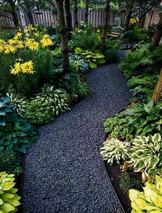 Faboulous Front Yard Path and Walkway Landscaping Ideas Landscape ideas for backyard Sloped backyard ideas Small front yard landscaping ideas Outdoor landscaping ideas Landscaping ideas for backyard Gardening ideas Cod And After Boulders Pathway Landscaping, Garden Paths, Front Yard Landscaping, Outdoor, Shade Garden, Outdoor Gardens, Landscape, Beautiful Gardens, Backyard