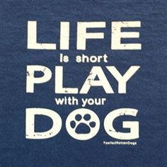 Life is Short Play With Your Dog T-Shirts for Dog Lovers Dog Quotes, Cute Quotes, I Love Dogs, Puppy Love, Dog Diapers, Life Is Short, Dogs And Puppies, Doggies, Dog Life