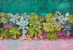 Succulents02 | Flickr - Photo Sharing!
