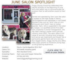 Salon Spotlight June 2012, Doggy Styling