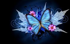 blue and black butterflies wallpaper