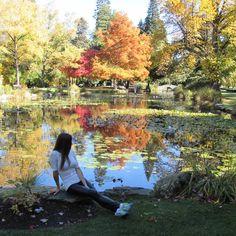 Observe the nature around you. Queenstown lake. #nomadiccarol #carolprates #newzealand