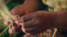 This video shows the incredible story of the Guatemalan craftswomen who create hand-woven bands that adorn every bottle of Ron Zacapa. A royal Mayan symbol representing… Mayan Symbols, Hand Weaving, The Incredibles, English, Craft, Hand Knitting, Creative Crafts, Crafting, Handmade