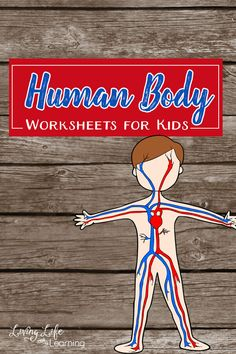 Try these cool human body worksheets for kids. These science worksheets will introduce the human body organs and their functions to your kids in an engaging and fun way. The Human Body, Human Body Lesson, Human Body Organs, Human Body Unit, Human Body Systems, The Body, Preschool Science, Science Education, Science For Kids