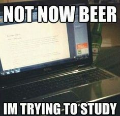 Come on beer! I have studying to do! ..ok fine, just one sip ;)
