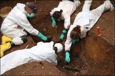 What is Forensic Anthropology? Forensic Psychology, Forensic Science, Weird Science, Social Science, Criminal Profiling, Body Farm, Forensic Anthropology, Biological Anthropology, Homesteads